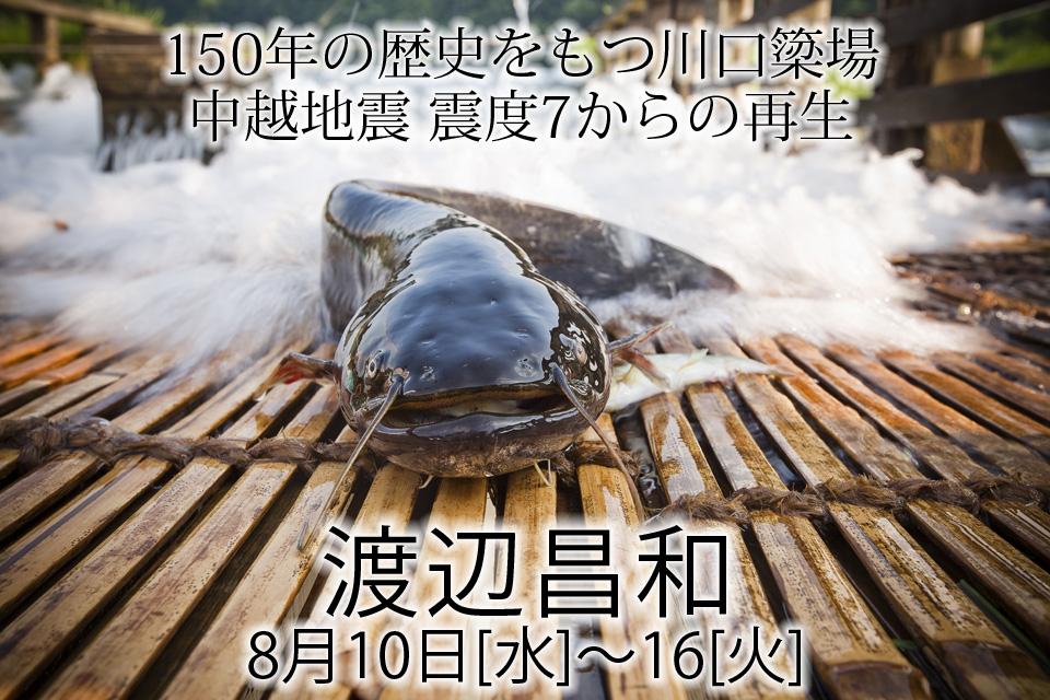 kawamutsu_exh