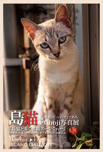島猫Choji写真展 / 島猫と歩く那覇スージぐゎー