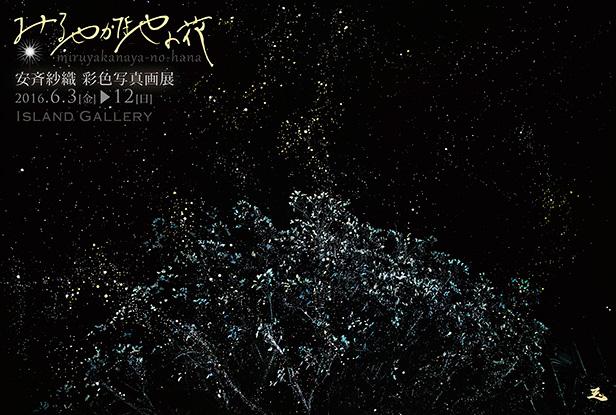 安斉紗織 彩色写真画展『みるやかなやの花』